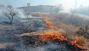 Resultado de imagen para incendios forestales en cordoba