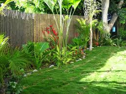 Small Picture 47 best Tropical Rooftop Garden images on Pinterest Landscaping