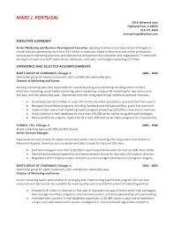 resume executive summary resume planner and letter example resume sample resume executive summary pegumkie