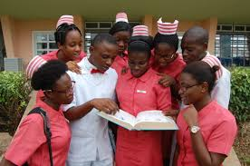school of nursing course since its inception the school s main thrust in meeting these broad objectives has been the training of middle level manpower for health industries