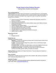 resume examples technical skills section volumetrics co resume early childhood teacher resume sample teacher resume examples 12 resume sample skills and interest resume skills