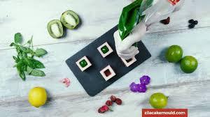 Zila <b>Cake Moulds</b> short videos - Forest <b>Fruit</b> Parfait cubes in 25-cube ...