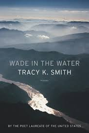 <b>Wade in</b> the Water | Graywolf Press