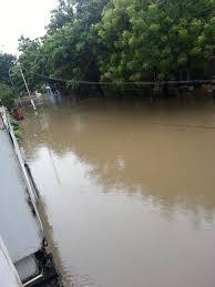 sandhya s blog chennai floods when essay topics became reality flooded street