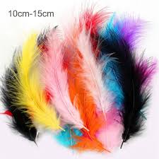 $1.35 - <b>100Pcs Lady</b> Wing Rooster Tail <b>Feather</b> Bridal Wedding ...