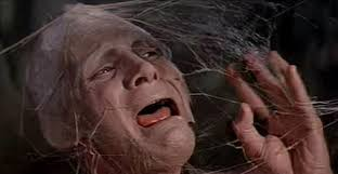 Image result for images of the 1958 movie the fly