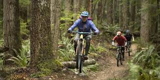 Mountain <b>Bike Suspension</b> Basics   REI Co-op