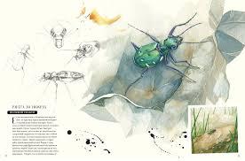 <b>Музей живых насекомых</b> - Лассерр Франсуа | Купить книгу с ...