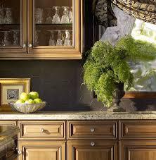 wall living plants designed