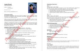 nanny resumes resume badak personal assistant nanny resume sample