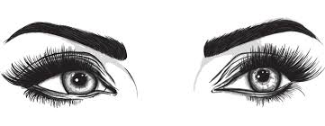 Tips for Selecting the <b>Best Eyebrow Stencil</b> Shapes for you