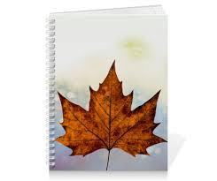 <b>Тетрадь на пружине</b> Осень #2839914 от FireFoxa