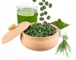 Image result for kosmetik spirulina