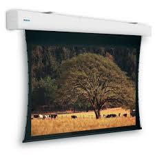 """Specs <b>Projecta Elpro Large</b> projection screen 3.9 m (153.5"""") 16:9 ..."""