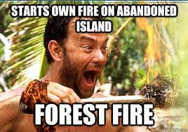 Starts own fire on abandoned island forest fire - Funny Meme ... via Relatably.com