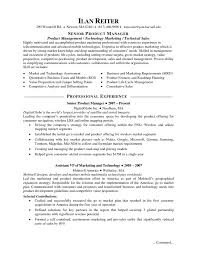 director of resume s functional resume