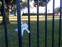 Image result for white house fence jumper