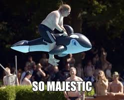 So majestic - Memes Comix Funny Pix via Relatably.com