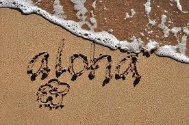 Image result for aloha sand