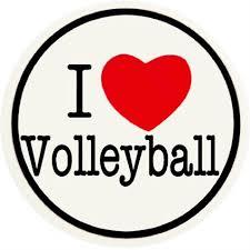 Risultati immagini per volleyball