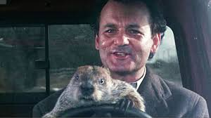 essay about groundhog day movie < custom paper academic writing essay about groundhog day movie