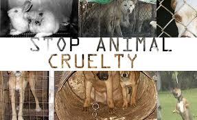 Animal Abandonment Quotes. QuotesGram