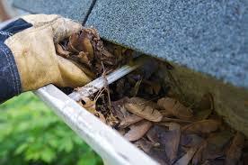 Image result for gutter cleaner listings