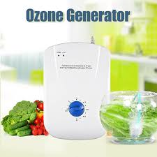 <b>Portable Active Ozone Generator</b> Sterilizer Air purifier Purification ...