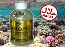 Obat herbal untuk gejala gagal ginjal