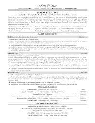 s executive cv   s executive resume summary   resume    sample resume sles of  s resumes senior executive  sample resume sles of sales resumes senior executive