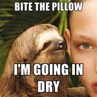 Sloth meme on Pinterest | Sloth Memes, Sloths and Kiwi via Relatably.com