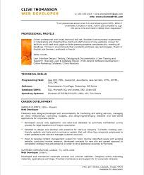 resume examples  chronological resume example basic resume    web designer resume examples for professional profile   technical skills and career development
