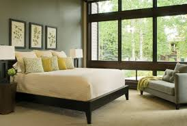 extraordinary best bedroom colors house interior design with walls gorgeous for ideas painted of grayish plus bedroom paint colors feng shui