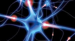 ¿Qué hacer ante un ataque de epilepsia?