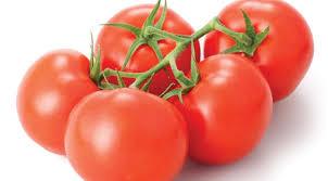 tomato க்கான பட முடிவு