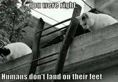 Funny/Cute Animal Pics - Page 5 Images?q=tbn:ANd9GcQPTiBcTEnNychh69AsrVCzNsSMwoNa16Vn2R49QLI1DLCqm5VS