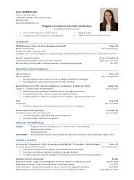 audit cv related keywords suggestions audit cv long tail keywords alice barbolosi cvdoc par cvpdf