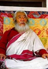 Image result for chatral rinpoche