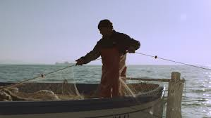 Стоковое видео «Crew of Fishermen Work On» (абсолютно без ...