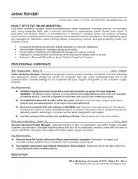 cover letter internet executive resume internet marketing cover letter executive resume writing job search coaching istock mediuminternet executive resume large size