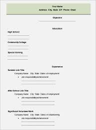best blank resume template   best resume templatejob resume template  job resume examples  job resume template word  job resume template