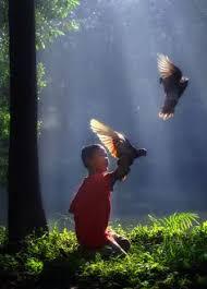 Лучшие изображения (21) на доске «Human & Nature | Человек и ...