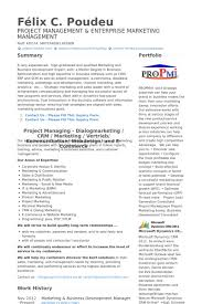 Business Development Manager Resume Sample Business Development
