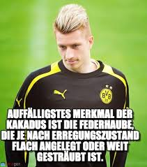 Stylish... - Marco Reus meme on Memegen via Relatably.com