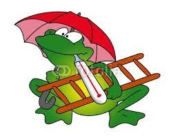 """Résultat de recherche d'images pour """"grenouille météo"""""""