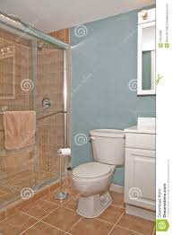 bathroom toilet and shower stall bathroom shower toilet
