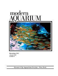 modern aquarium 2011 by dan radebaugh issuu