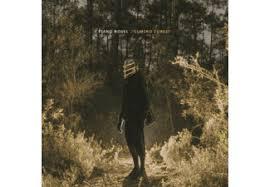 <b>Piano Novel</b> | <b>Lumino</b> Forest - (Vinyl) <b>Piano Novel</b> auf Vinyl online ...