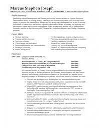 examples of resumes how to write a professional profile resume 85 wonderful professional looking resume examples of resumes