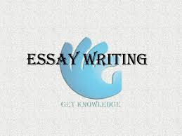 English grammar essays writing   Ricky Martin English grammar essay writing unit standards